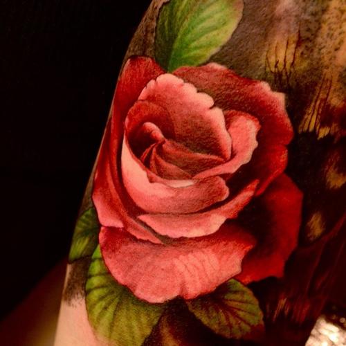 Татуировка красная роза за ухом
